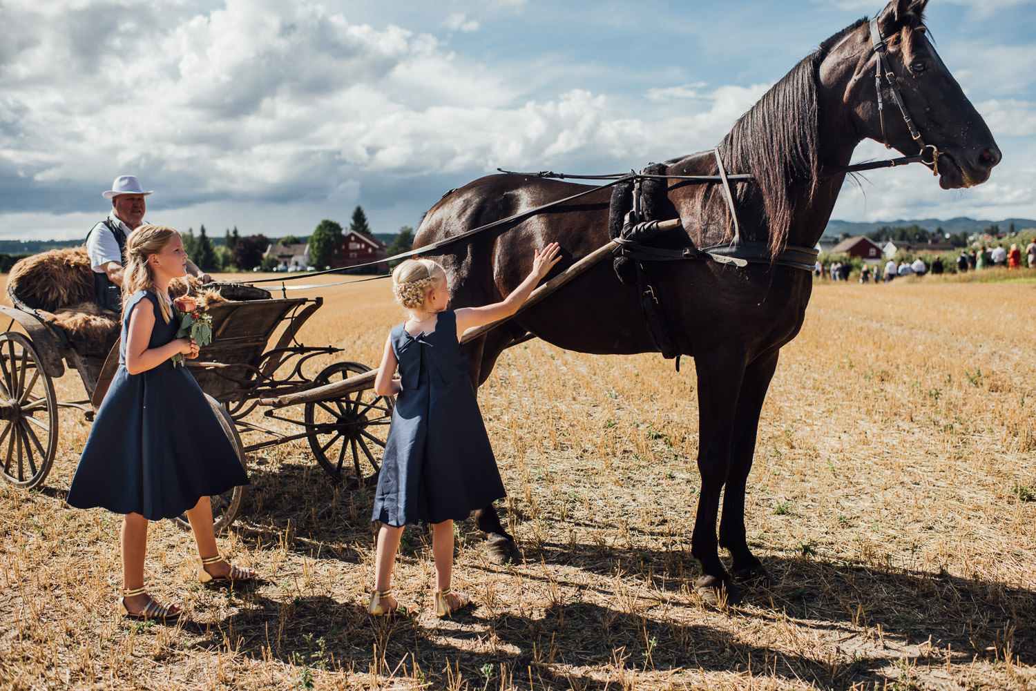 bridal carriage in Norwegian Barn Wedding by norway destination wedding photographer the shannons photography